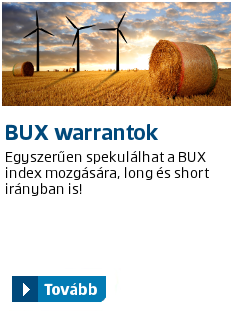 index: BUX warrantok 160711